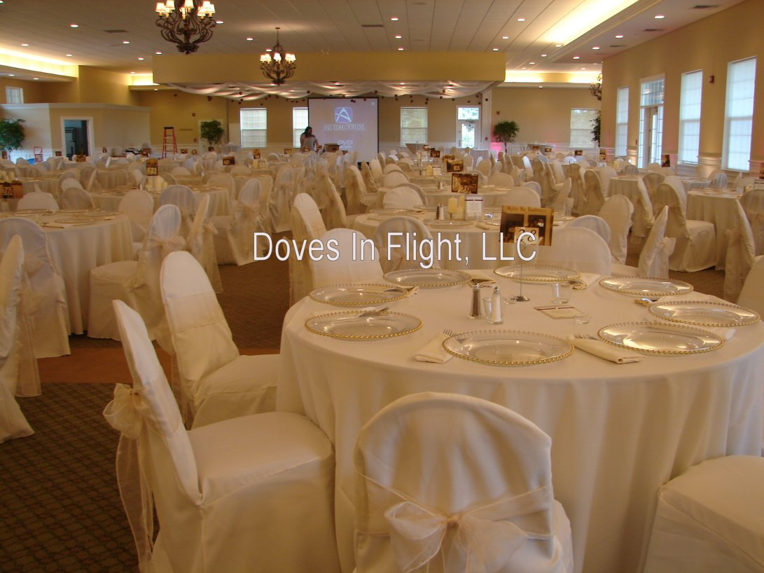 Chair Cover Decorations Cheaper Than Retail Price Buy Clothing Accessories And Lifestyle Products For Women Men