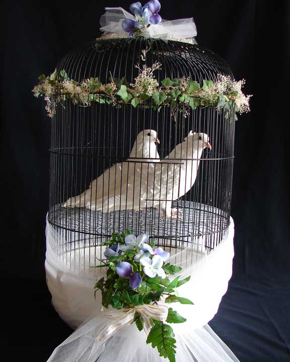 Chair Covers Of Lansing Wedding Dove Releases